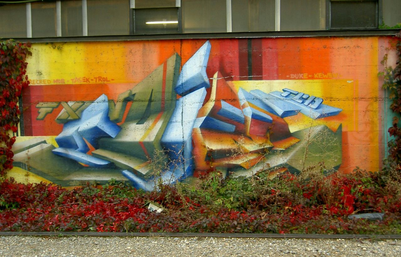 graffiti, architecture, outdoors, multi colored, no people, built structure, day, building exterior, grass, close-up