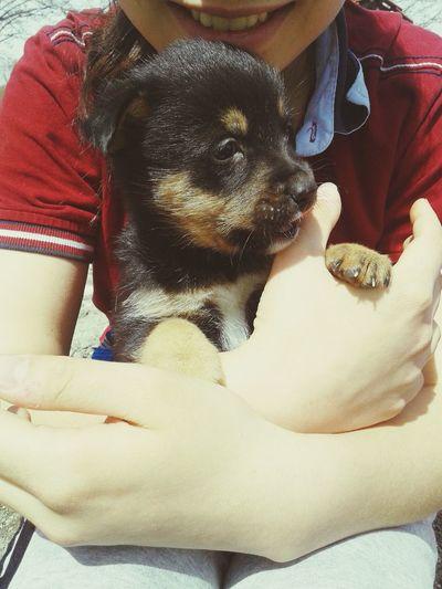 Hi! Taking Photos Enjoying Life Buda Benim Aşkım Dog Love
