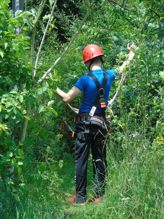 Boys Day Klimbing Park Leisure Activity Lifestyles Outdoors