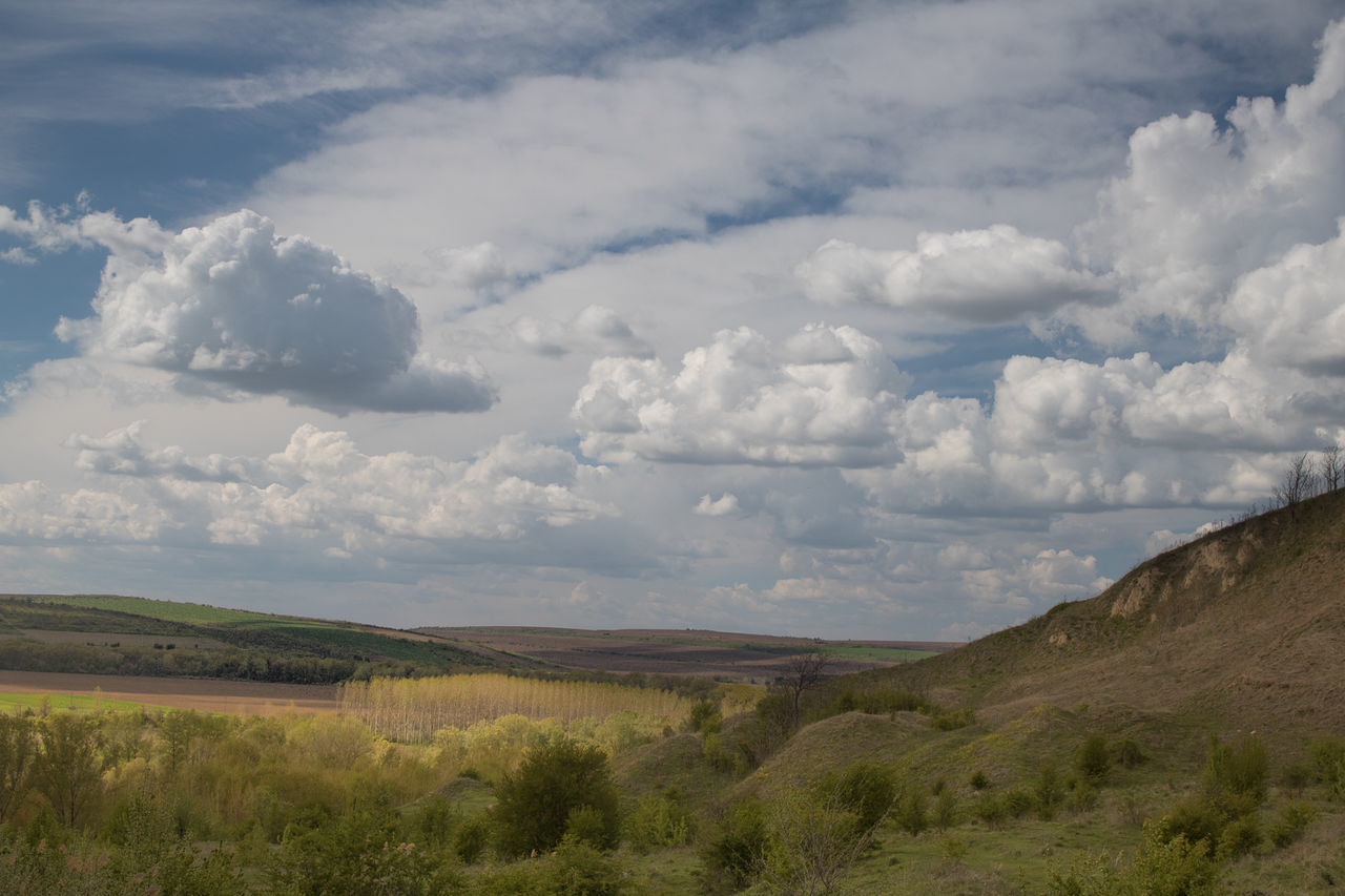 cloud - sky, sky, nature, tranquil scene, landscape, day, scenics, tranquility, beauty in nature, outdoors, no people, grass
