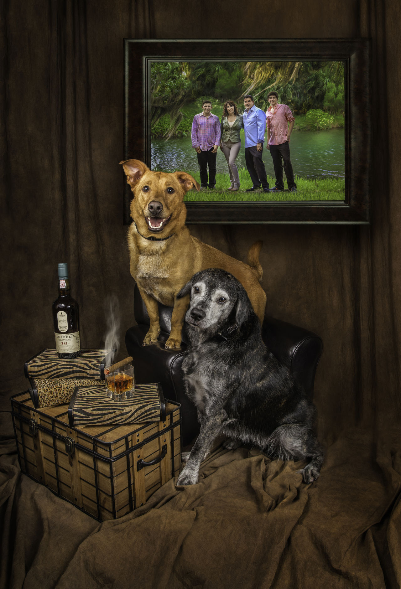 Celebrate Family Cigar, Dog, Composite Composite Dog Composite Image Corgy Creative Family Photo Cutest Dog Ever Cutest Dogs Ever Dog Portrait Eye4photography Eyeem Best Shots EyeEm Best Shots EyeEm Pets Family Photo Family Portraits Humorous Pets Mutt Mutts Are The Best