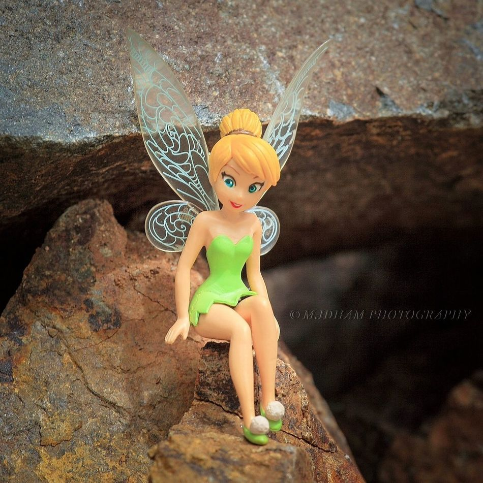Tinkerbell - sweet sit & smile StillLife Toys EyeEm EyeEm Indonesia