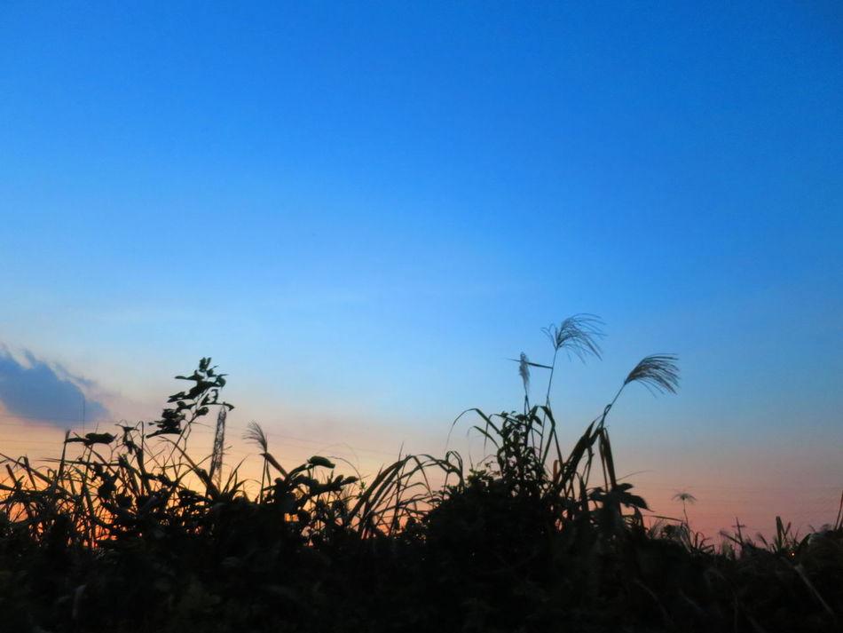 お疲れ様。空気が冷たいね。 Canon S120 Twilight Afterglow Sun Set