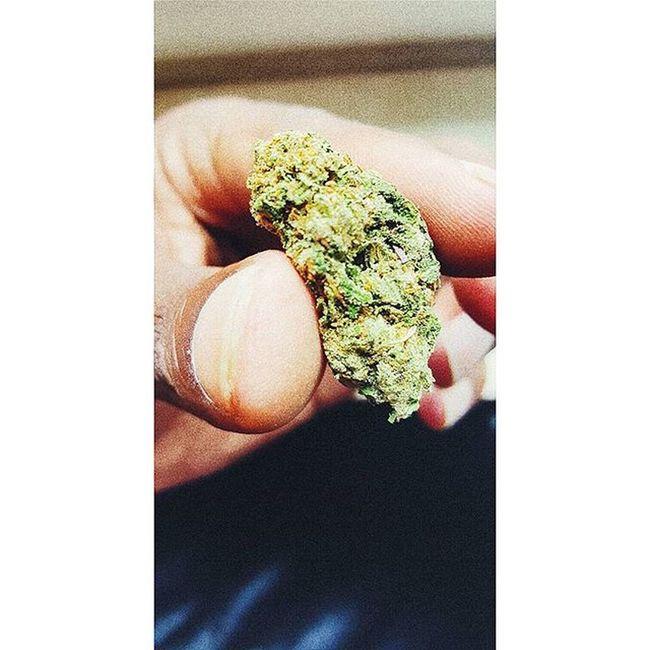 TIME ⌚ TO GO 2 THE 🌜 WON'T BE BACK NO TIME SOON ☺😊😉 Bluecheese Kush StrongKush Stoner Stonerlife Stonernation Stonerdays Weed Marijuana 420 Gethigh