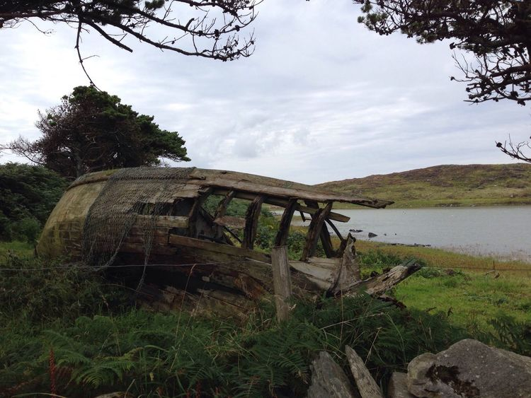 Abandoned Damaged Boat No People Nature Outdoors Landscape Sky Grass Field Tree Water Lake Lake View Lakeshore Tranquility Scenics Beauty In Nature Cape Clear Perspectives On Nature