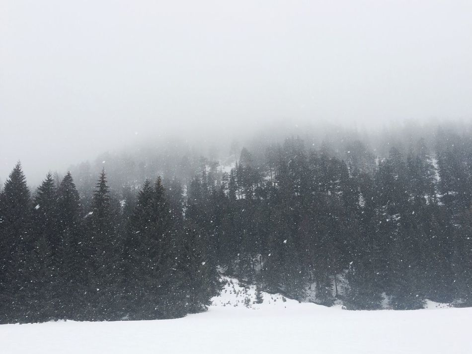 Hello World Taking Photos Winter Snow Austria Cold Maghashtagsnicht Spring Nicht Haha