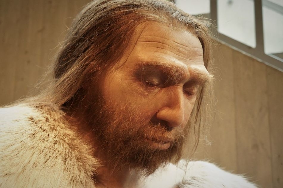 Neandertal Museum Adult Ancient Civilization Close-up Day Early European People Front View Headshot Lifestyles Menstyle Neandertaler One Person People Portrait Shirtless Window Young Adult