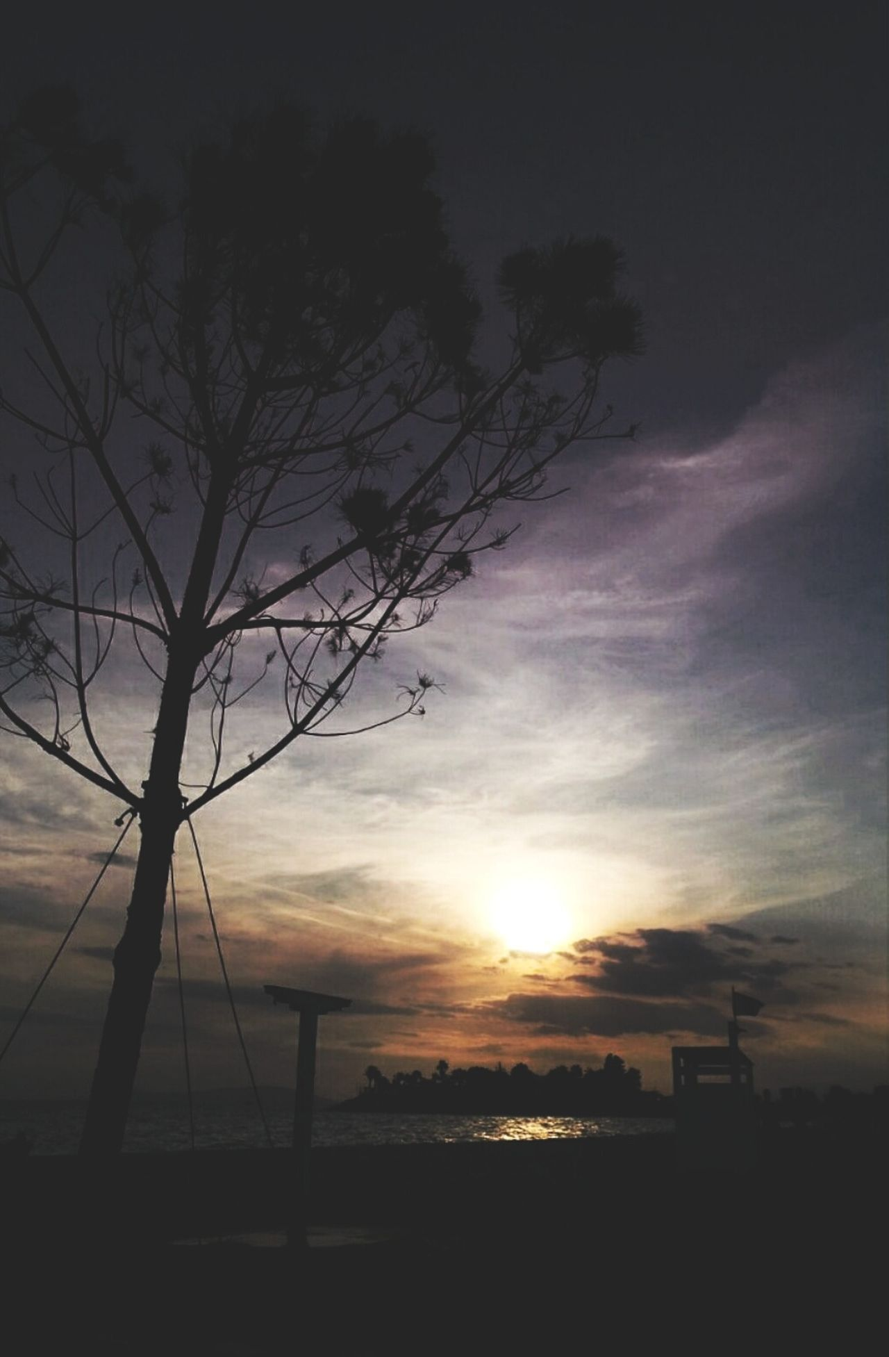 A dark sunset Sunset Silhouette Nature Tree Beauty In Nature Sun Cloud - Sky Bare Tree Dramatic Sky No People Travel Destinations Outdoors Sky Vacations EyeEm Gallery 3XSPUnity Eyeemphotography Greece Hellas Picsoftheday EyeEmBestPics EyeEm Best Shots Sunset_collection Scenics Nature EyeEmNewHere
