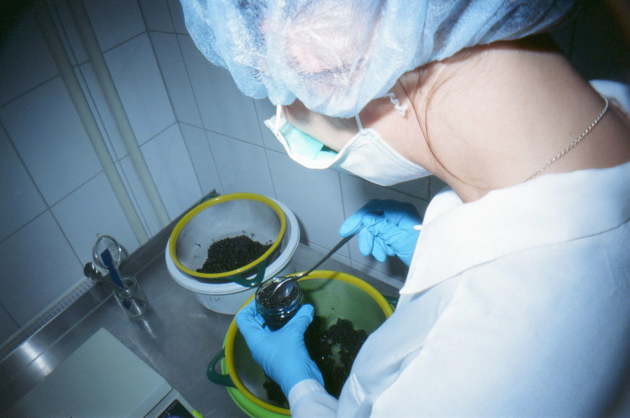 Beautiful stock photos of science, Bucket, Chemistry, Day, Faucet