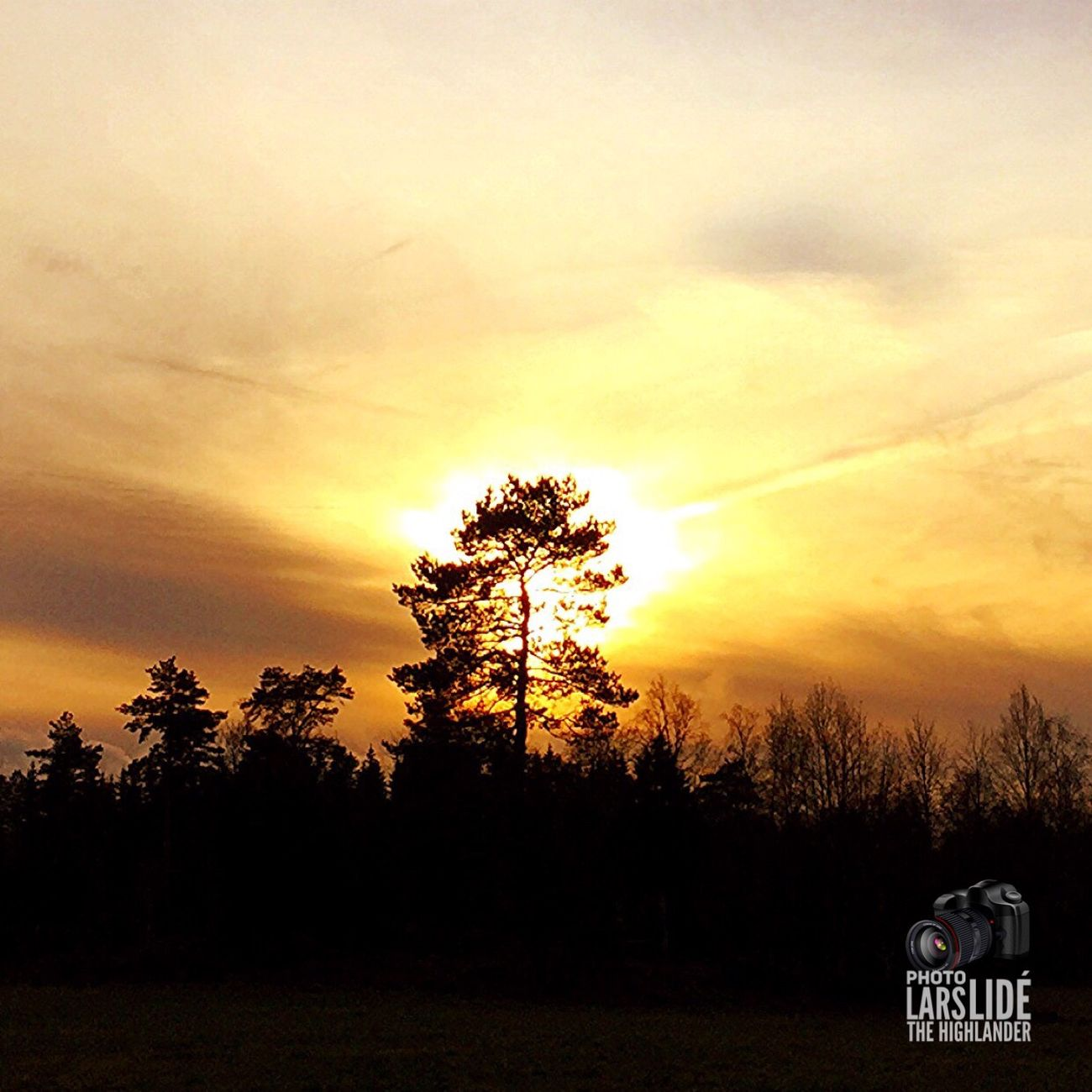 Sunset Tree Sky Nature Beauty In Nature Orange Color Silhouette Sun Cloud - Sky No People Outdoors Landscape Countryside Cold Temperature Winter