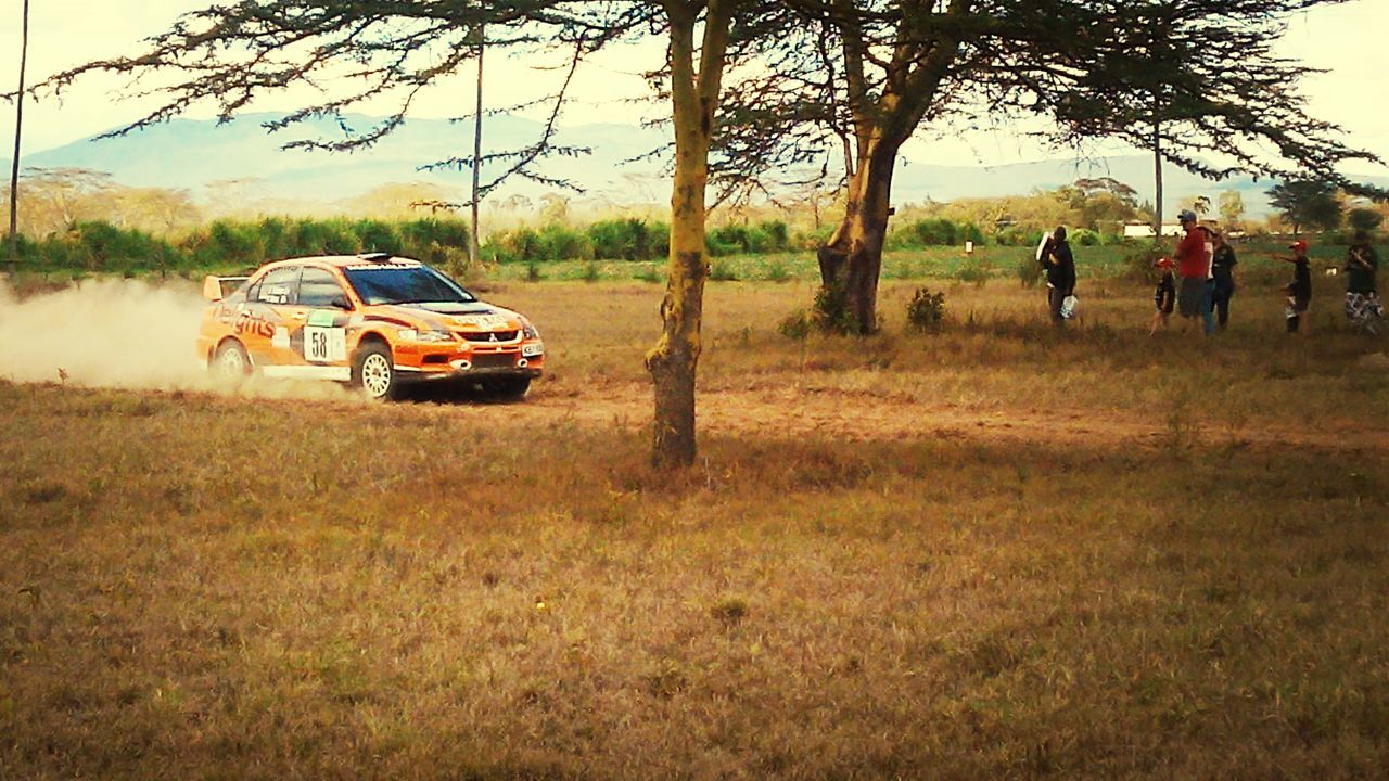 car, field, transportation, real people, land vehicle, tree, nature, men, outdoors, day, adventure, landscape, growth, sunset, grass, sky, people
