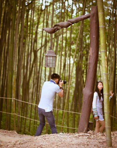 One Moment Forest Bamboo Outdoor Photography Can't Focus South Korea 대한민국 Travel Destinations