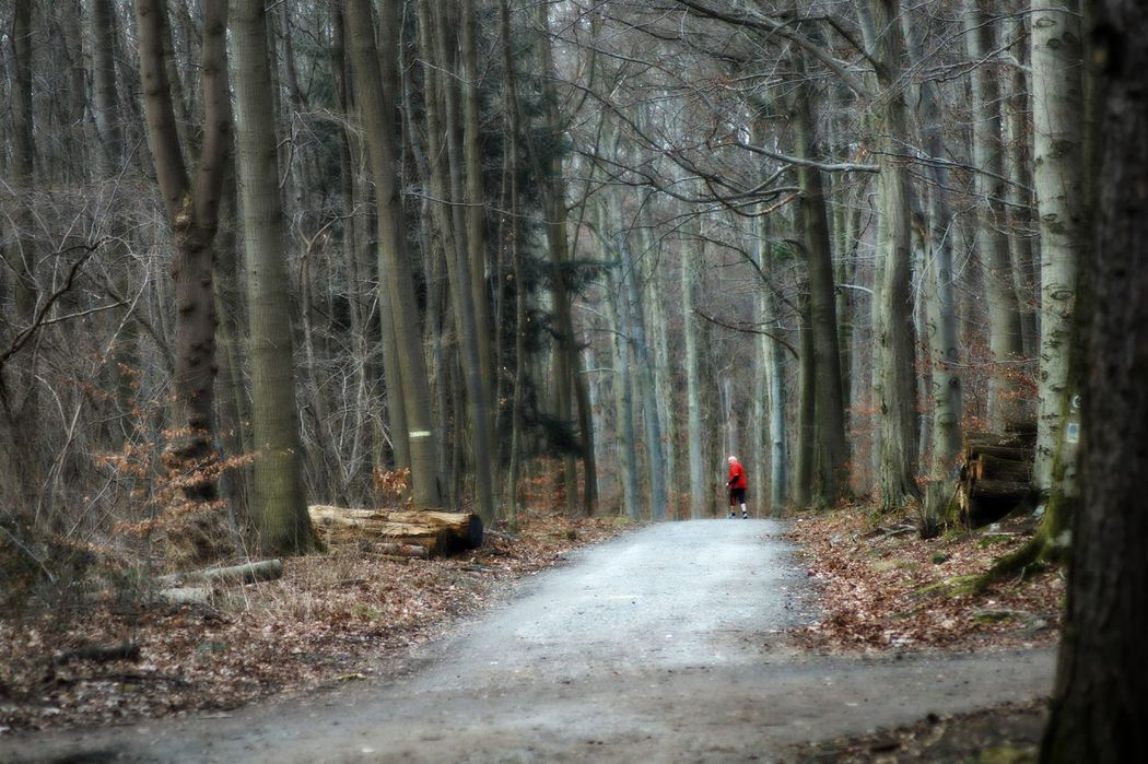 Lonely Runner Old Man Running In The Woods Professionally Dressed Red Shirt Loneliness Melancholic Landscape Trees Forest The Way Forward Nature Cold Atmosphere One Person Real PeopleAdult Beauty In Nature Forest Path City Forest Frankfurt Am Main Germany🇩🇪 The Great Outdoors - 2017 EyeEm Awards The Photojournalist - 2017 EyeEm Awards Live For The Story Investing In Quality Of Life