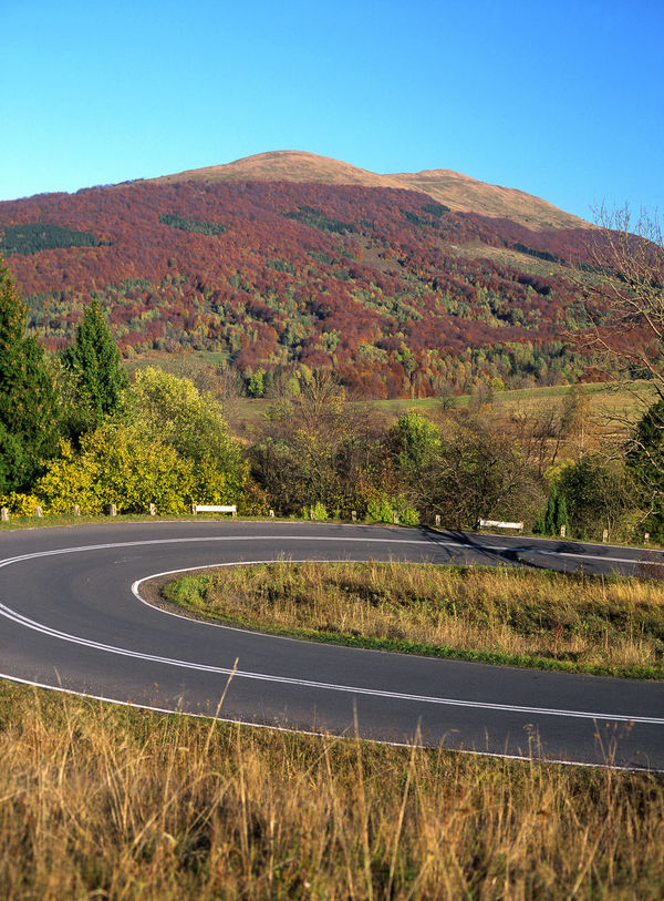 Autumn Autumn Colors Beauty In Nature Bieszczady Bieszczady Carynska Carynska Mountain Road Nature No People Outdoors Polonina Polonina Carynska Polonina Carynska Połonina Caryńska Road Tree Turn