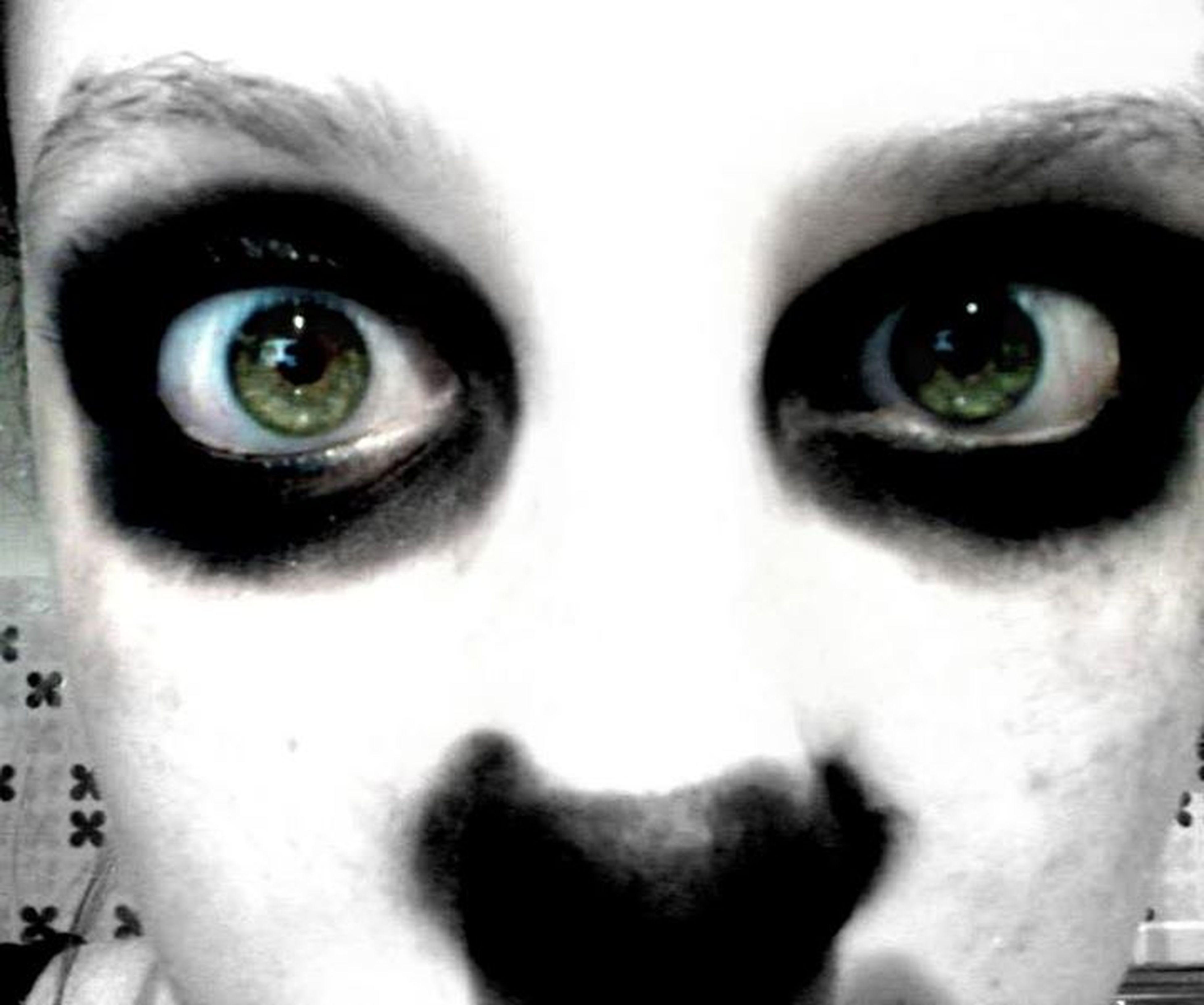 looking at camera, portrait, close-up, human eye, human face, indoors, headshot, full frame, staring, eyelash, extreme close up, part of, extreme close-up, front view, eyesight, backgrounds, detail
