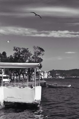 black and white in İstanbul by Fdayi