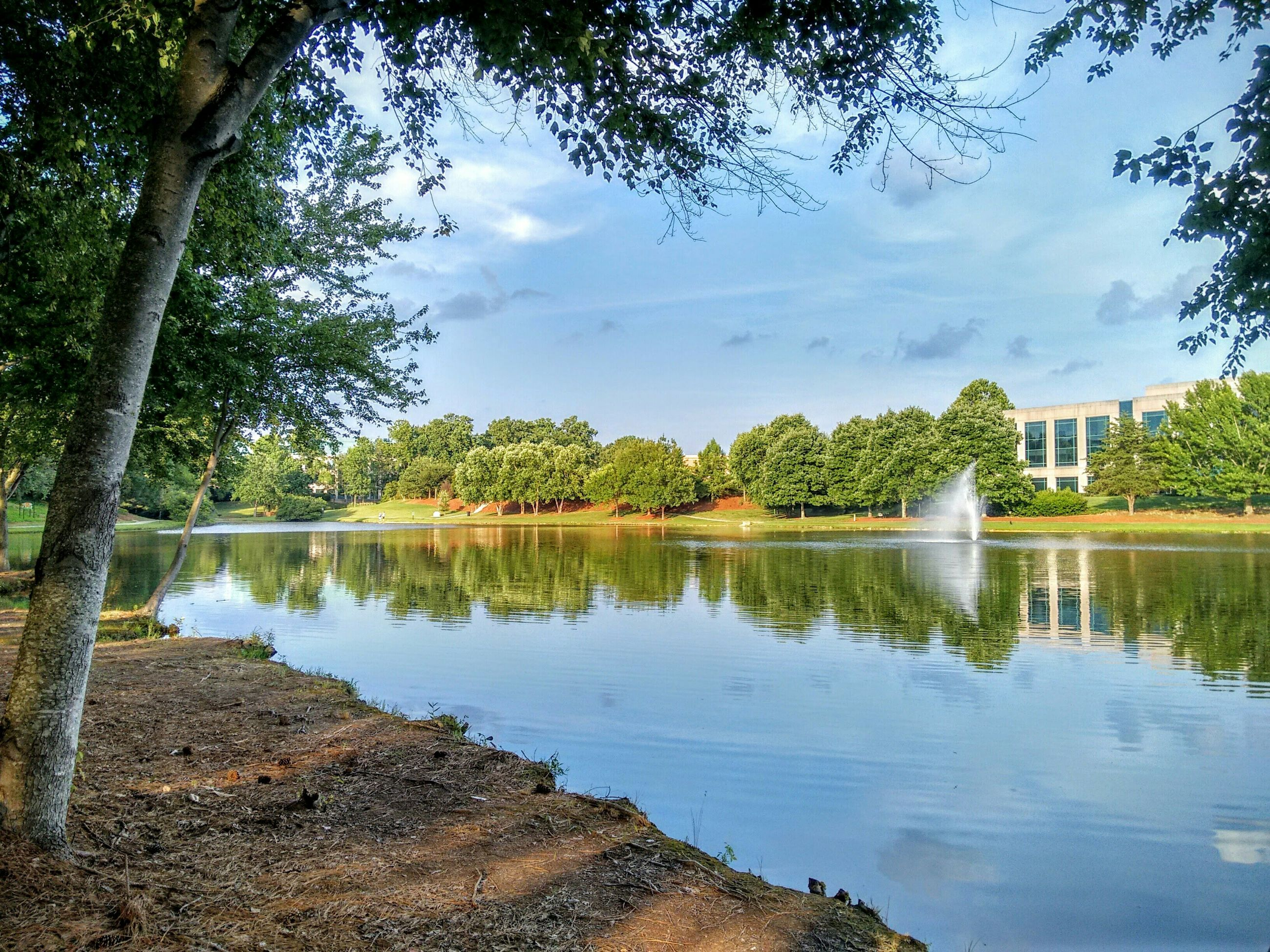 tree, water, reflection, architecture, built structure, lake, building exterior, sky, growth, scenics, tranquility, tranquil scene, nature, day, outdoors, beauty in nature, cloud - sky, no people, vacations, majestic