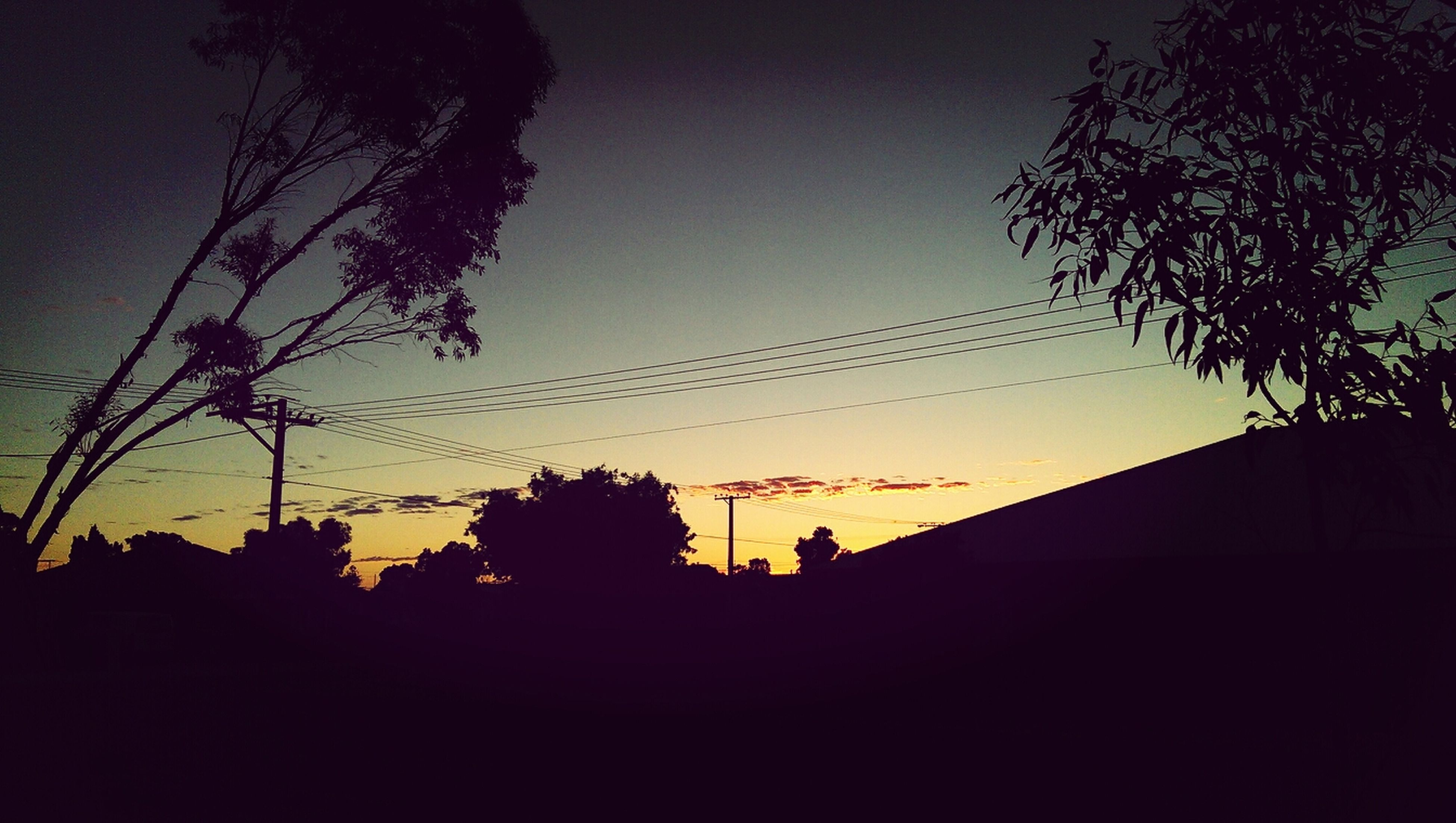 silhouette, sunset, tree, power line, low angle view, electricity pylon, sky, dark, outline, connection, clear sky, cable, branch, dusk, nature, tranquility, bare tree, copy space, beauty in nature, electricity