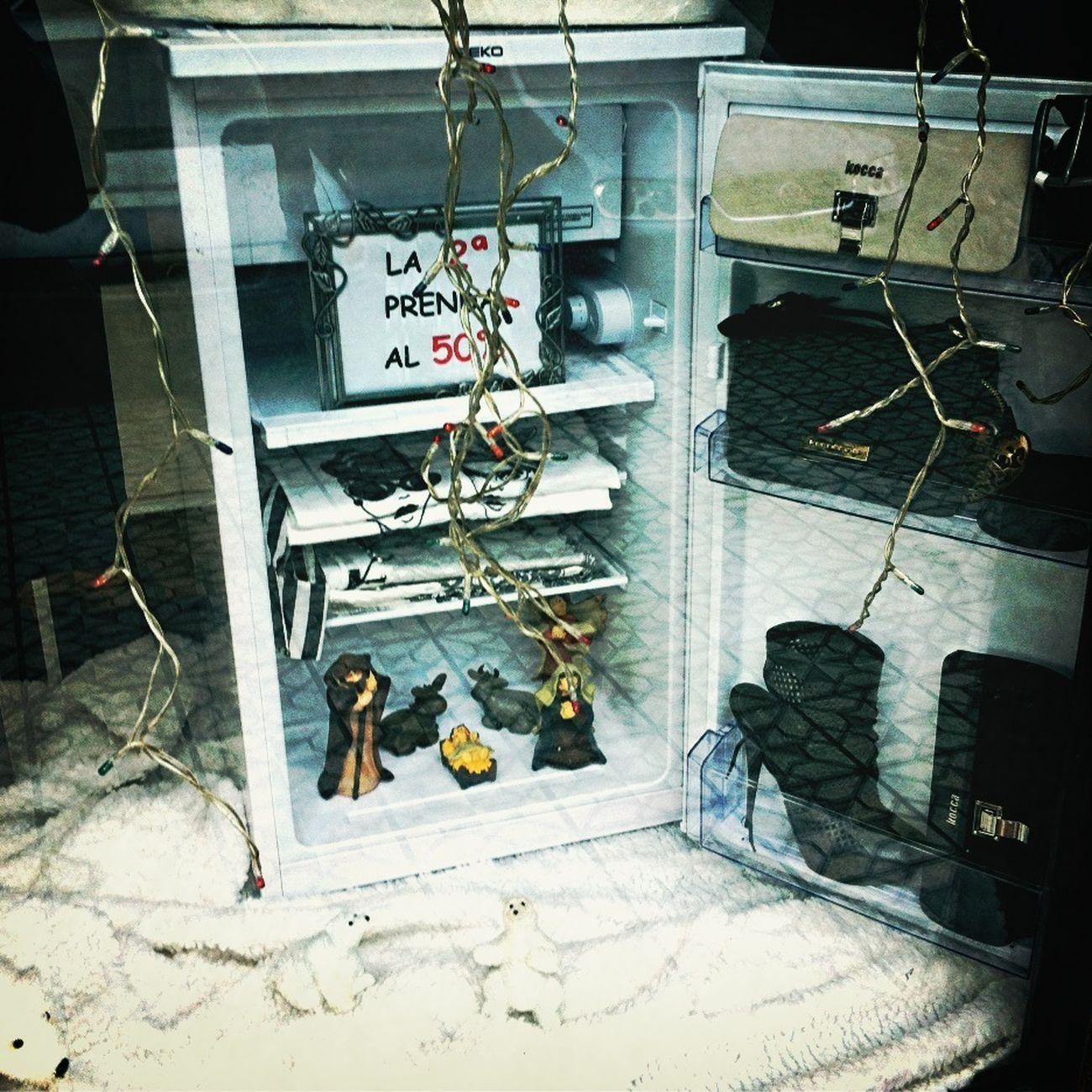 Nativity in the fridge. With polar bears.