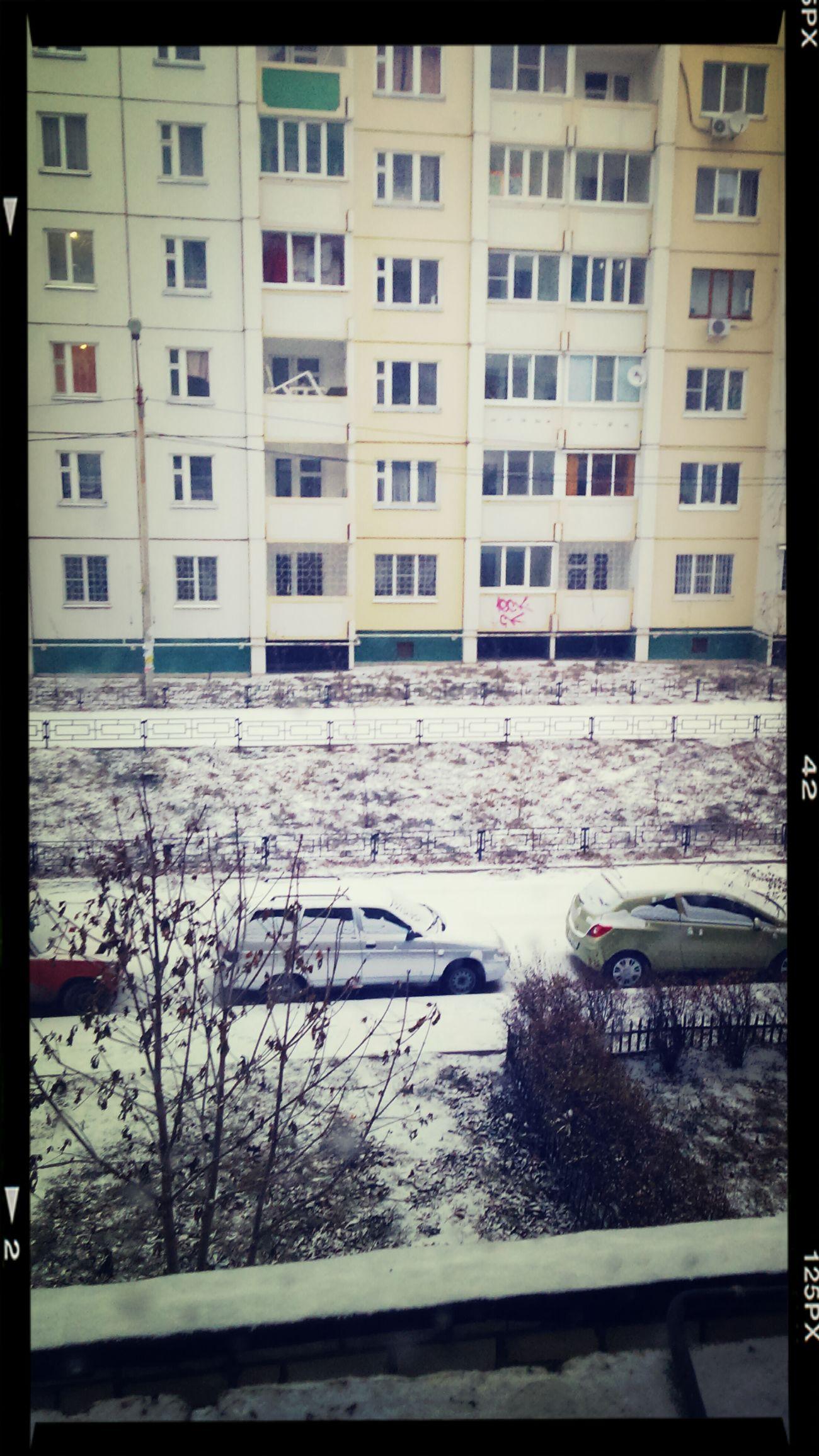 Первый снег^^ несамыйлучшийвид