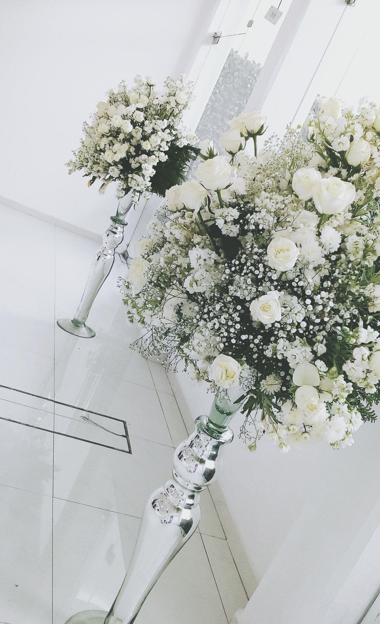 Elegance is key. Elégance Flower No People Plant Nature Indoors  Close-up Wedding Floral White Love