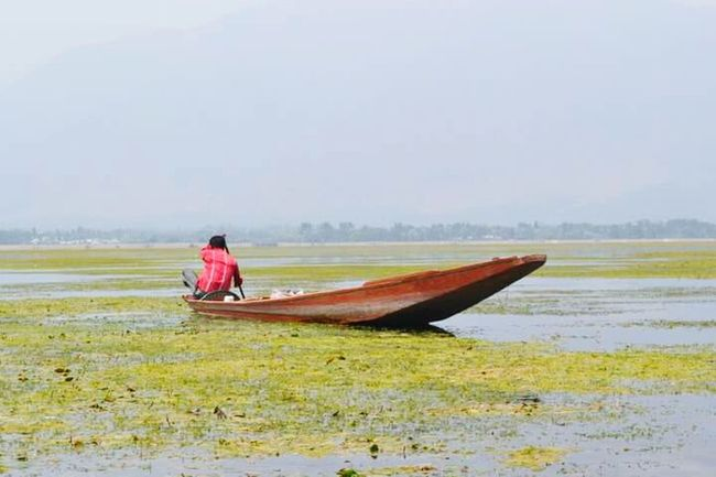 Srinagar Kashmir Transportation Fog Water Tranquil Scene Boat Men Mode Of Transport Lifestyles Tranquility Rural Scene Nautical Vessel Leisure Activity Scenics Occupation Casual Clothing Nature Foggy Beauty In Nature Non-urban Scene Rowboat
