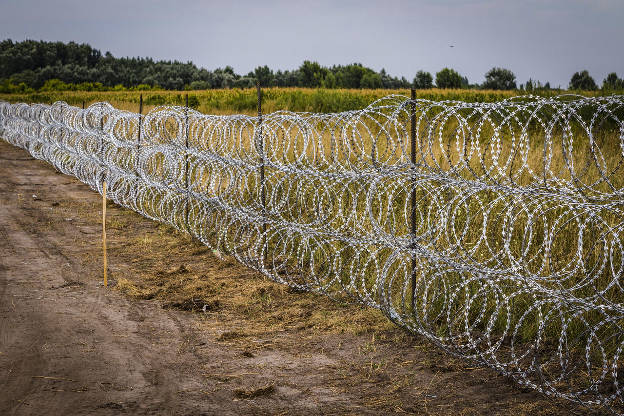 Firewall against illegal immigrants and refugees on the border between Hungary and Serbia Barbed Wire Barbed Wire Fence Border Borderline Fence Firewall Frontier Frontière In A Row No People Outdoors State Border