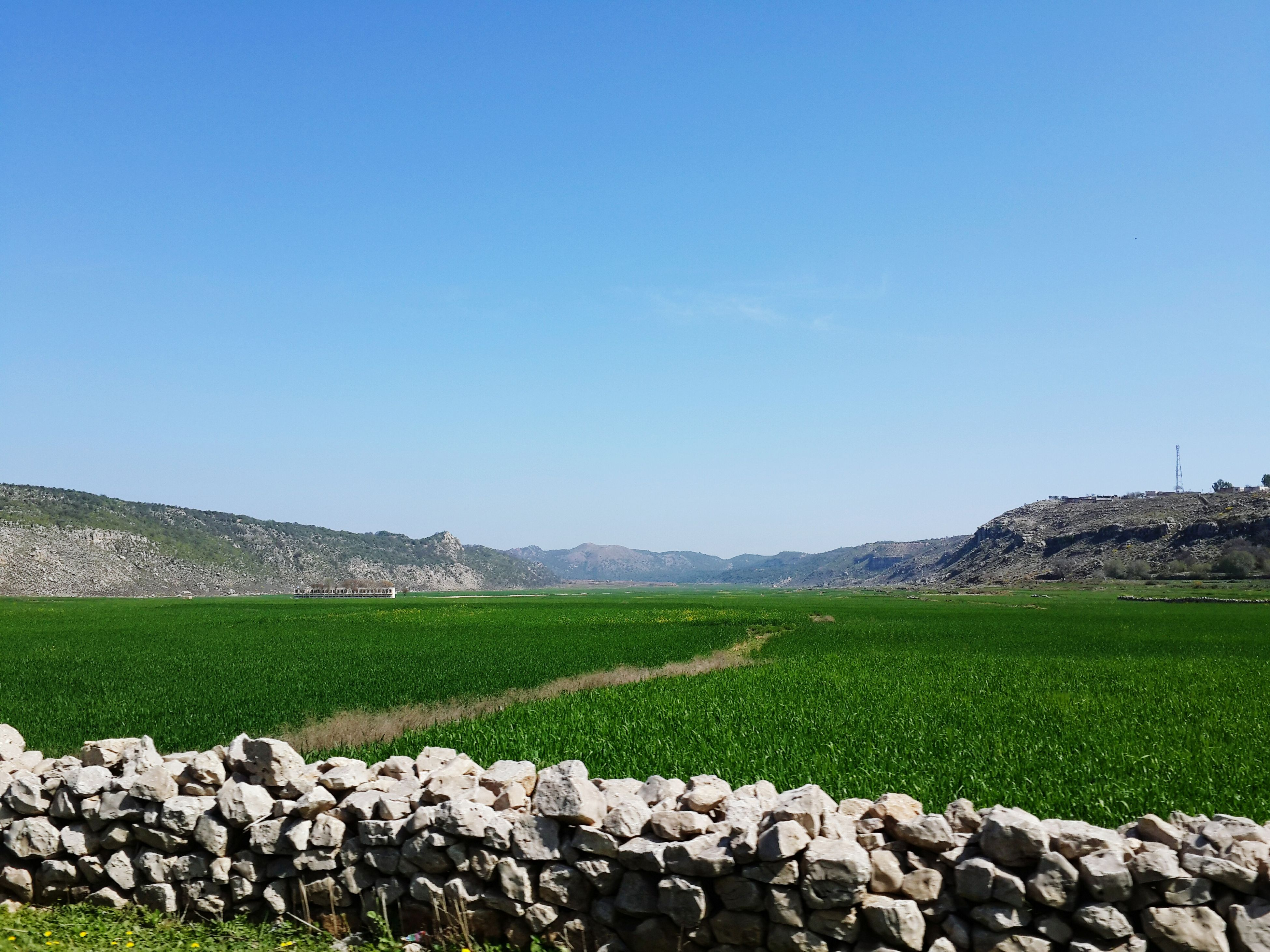 clear sky, landscape, tranquil scene, field, copy space, tranquility, grass, rural scene, blue, scenics, nature, agriculture, beauty in nature, green color, stone - object, growth, day, stone wall, sky, plant