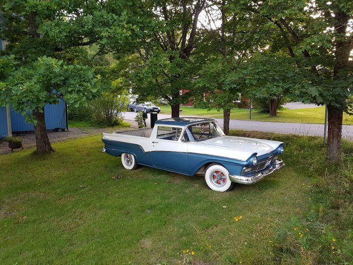 Old american car under tree