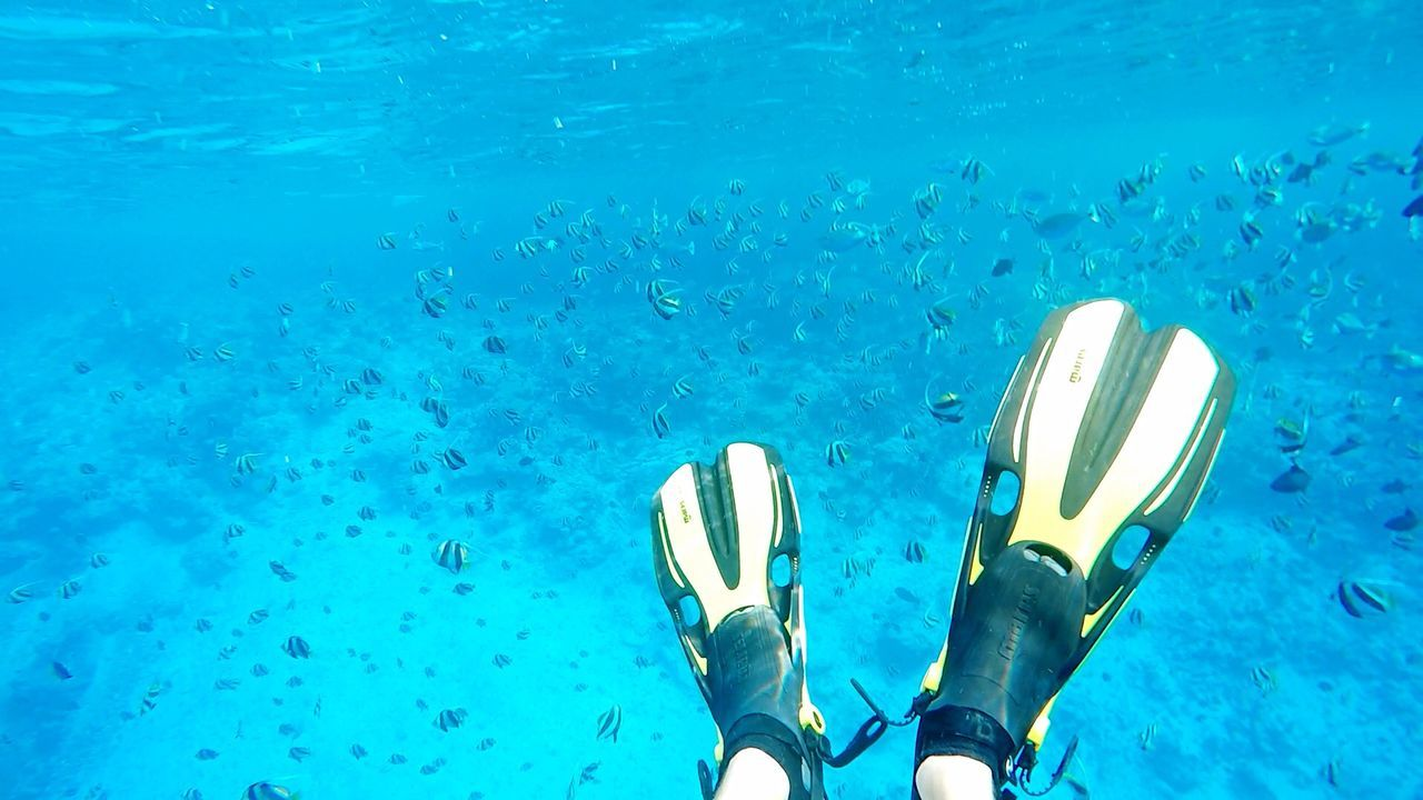 underwater, blue, water, one person, undersea, swimming, day, low section, human body part, close-up, outdoors, people