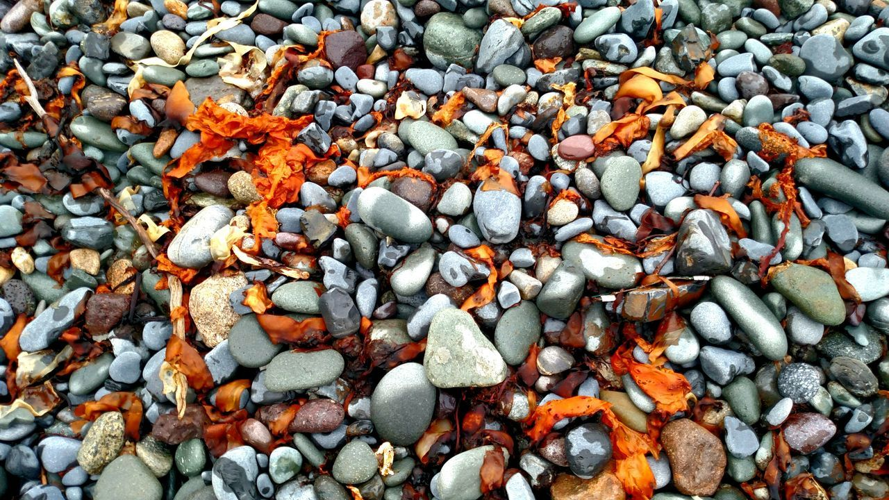 The rocks of the sea. Maine Rocks Sea Sealife Nature Heals