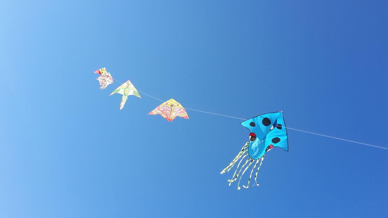 Colour Of Life Kite Kite On The Beach Beach Photography Looking Up Kite In The Sky Capture The Moment Blue Sky