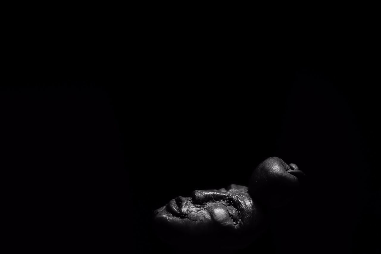 Apple B&w Blackandwhite Photography Blackbackground Human Human Body Part Sculpture Sony Working Workshop