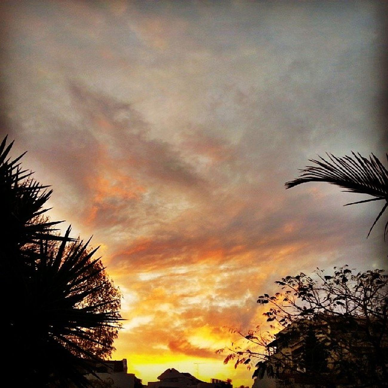 רגע לפני הטיפטוף.... Sunsetsunrise_photo