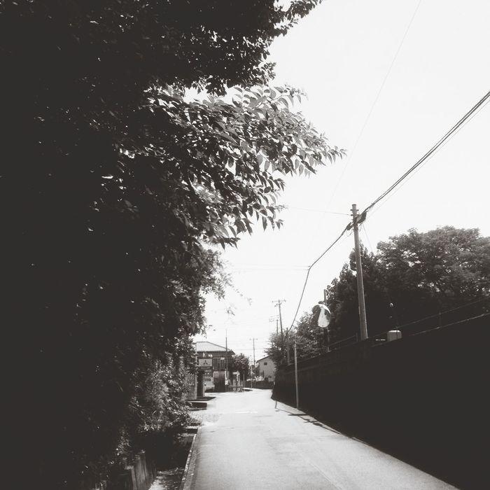 Path Black & White