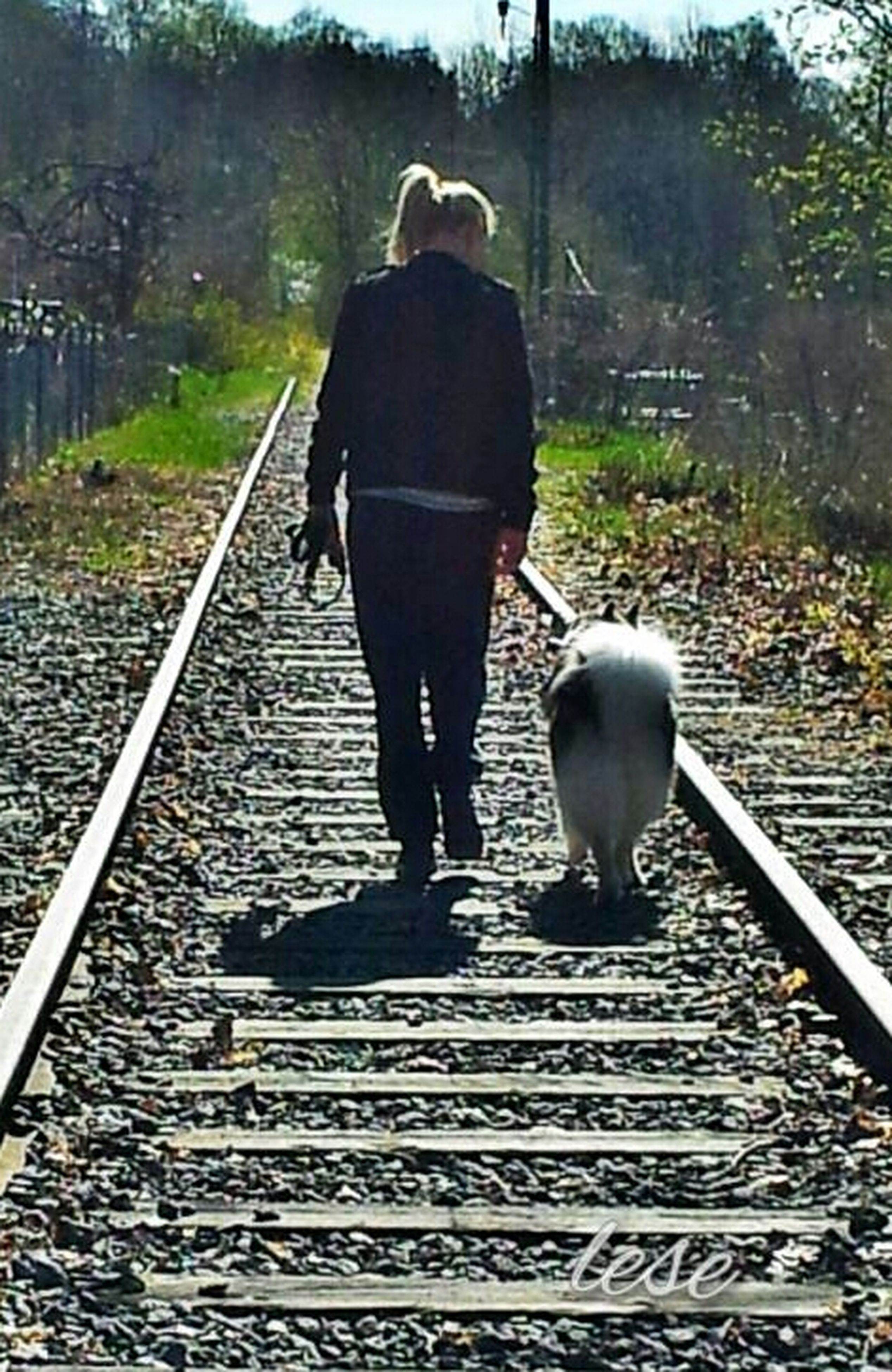 rear view, lifestyles, the way forward, full length, railroad track, men, leisure activity, transportation, walking, standing, diminishing perspective, person, rail transportation, tree, casual clothing, day, vanishing point, railing