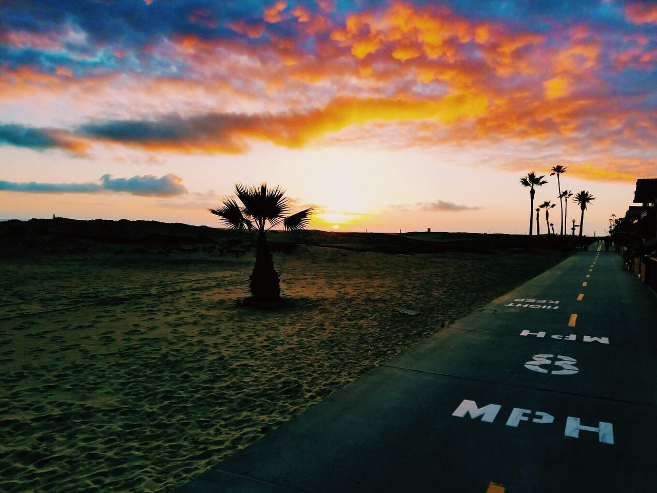 Sky Sunset Cloud - Sky Outdoors Road Nature Tree Day Water Colors Ocean California California Dreaming Beach Sunset