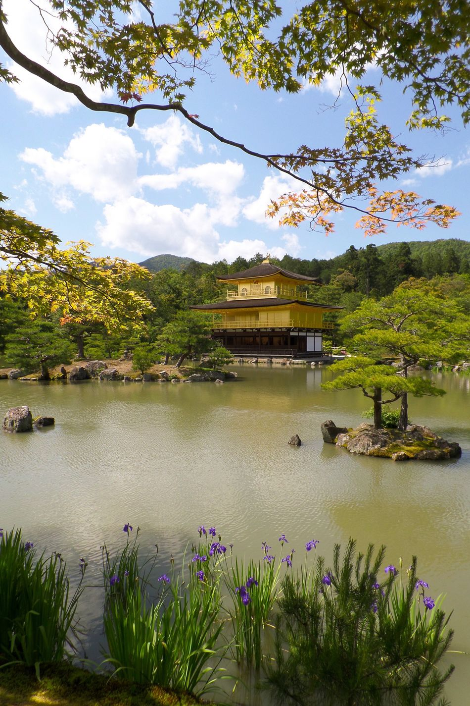 Kyoto Tree Travel Destinations Nature Lake Flower Scenics Sky Water Day Outdoors Tranquility No People Architecture Beauty In Nature Mountain Plant Vacations Growth Building Exterior Branch Golden Temple Kyoto, Japan