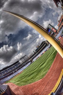 Nature at Turner Field by John