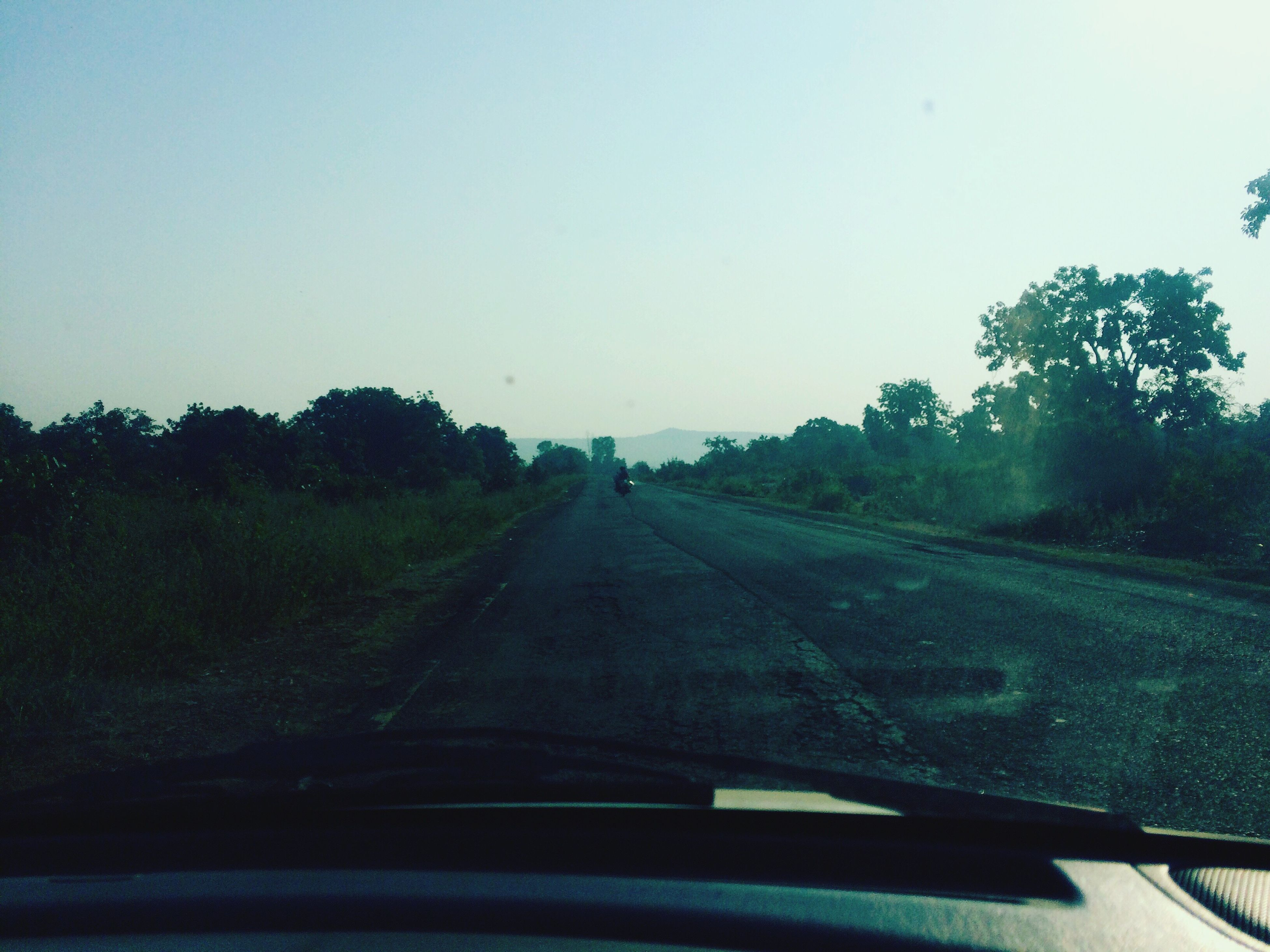 transportation, tree, land vehicle, mode of transport, car, car interior, windshield, road, vehicle interior, clear sky, diminishing perspective, the way forward, tranquil scene, car point of view, landscape, country road, tranquility, nature, non-urban scene, scenics, blue, outdoors, day, vanishing point, countryside, long, growth, beauty in nature