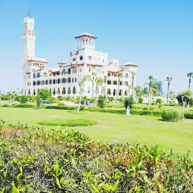 Architecture Built Structure Building Exterior Grass History Clear Sky Castel Castello Alexandria Egypt Tower Travel Destinations Green Color Growth Tourism Plant Famous Place Outdoors Tall - High Lawn Day Blue The Past Tranquil Scene