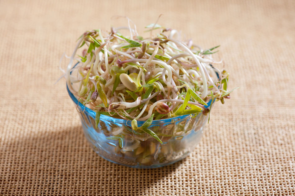 Mix of fresh plant sprouts growing in glass bowl standing on mat, domestic horticulture of healthy plants and seeds, detail of vegetables in horizontal orientation, nobody. Bowl Bud Burgeon Cereal Food Germinate Germinated Germination Grains Green Greens Greenstuff Growing Healthy Eating No People Seed Seeds Soak Sowing Sprout Sprouted Sprouting Sprouting Seeds Sprouts Vegetable