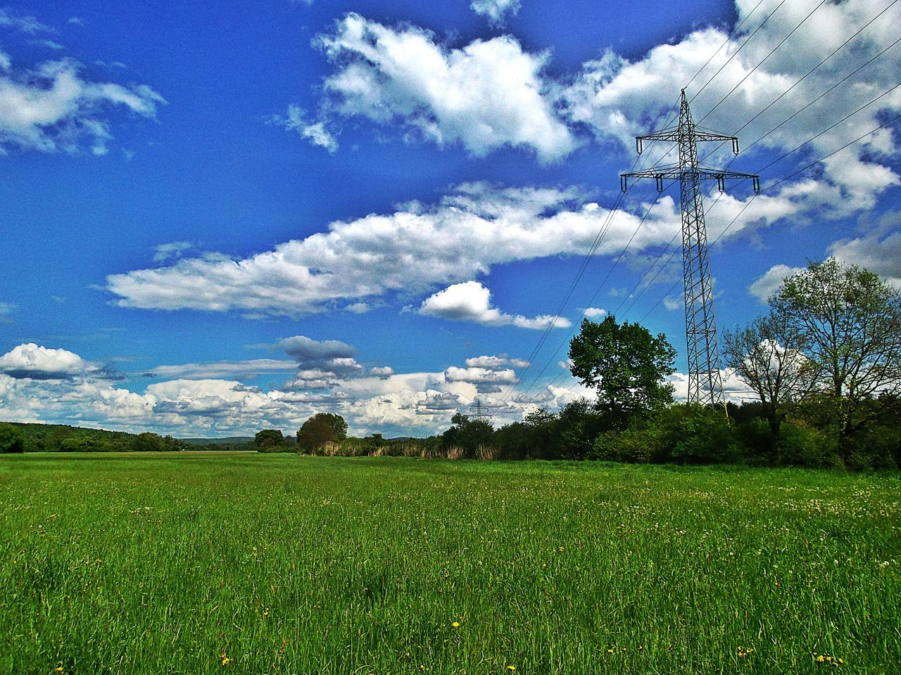 Rural Landscape Spring Impressions Cloud - Sky Blue Sky White Clouds Sunny Day Meadowlands Green Grass Rural Scene Trees Growth Field Tranquility Tranquil Scene Agriculture Scenics Nature Powerlines Landscape Beliebte Fotos Day No People Kinzig Auen Langenselbold Germany🇩🇪