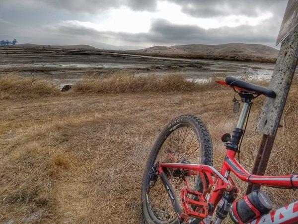 Taking Photos Bike Bikeporn Nature_collection Nature Sojourner