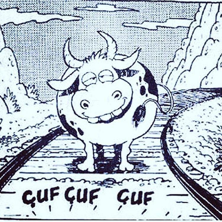 Cuf cuf cufffff Komik Karikatur Karikatur Mizah eglence eglenceli komedi penguen girgir uykusuz caps istanbul fun funny lol