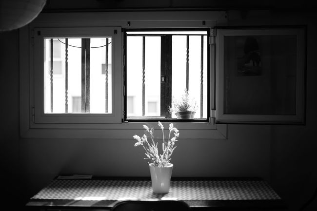 Black And White Collection! Black And White Photography Chair Close-up Day Daylight Dining Table Flower Flower Arrangement Ideas Indoors  Interior Design Lines Modern Simetry Still Life Table Window Women Photographers