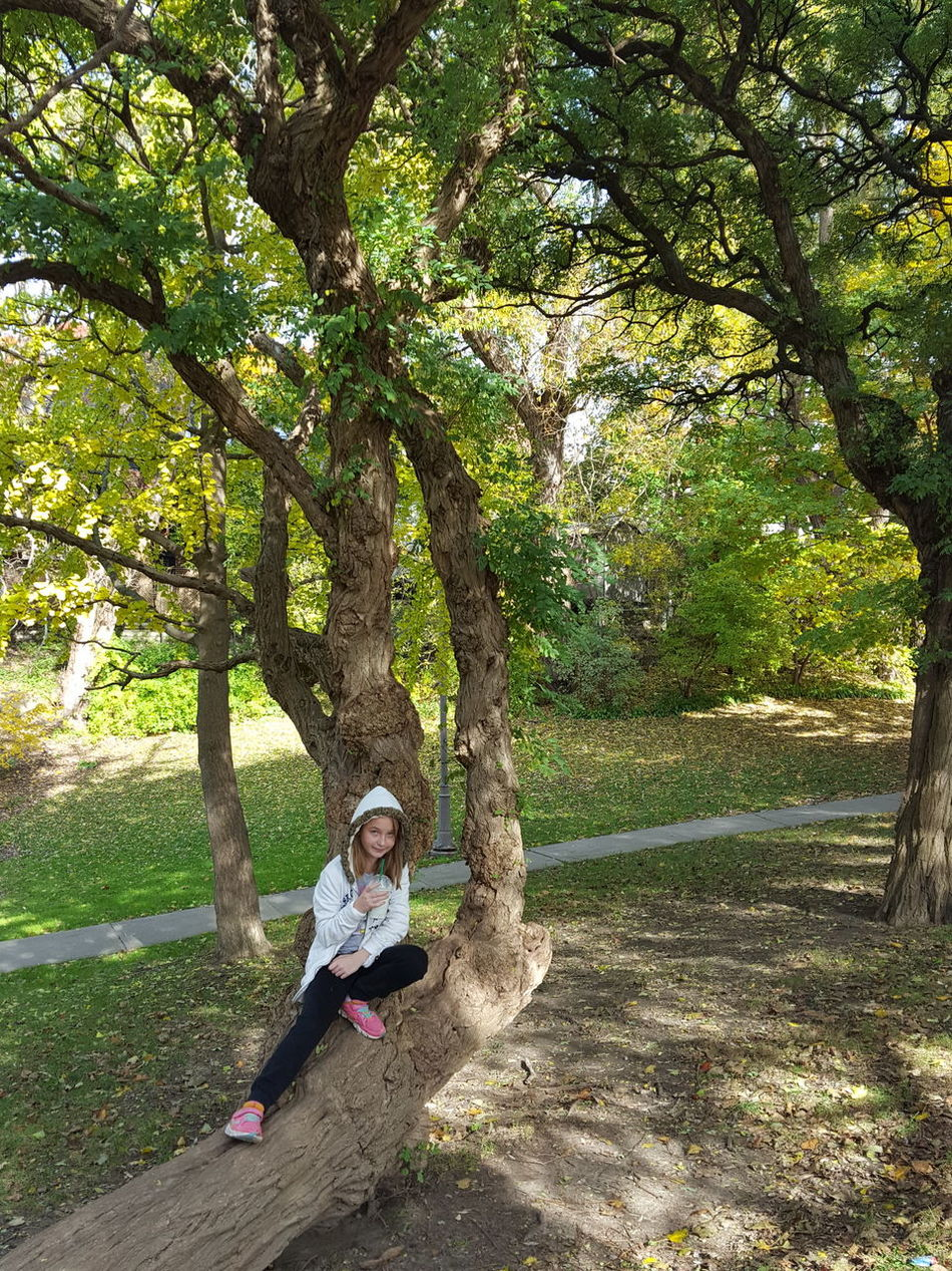 Toronto Toronto Landscape Nature Park  Park full length Tree Sitting One Person Nature Green Color People Outdoors Childhood Portrait One Girl Only Swing Day Beauty In Nature Adult