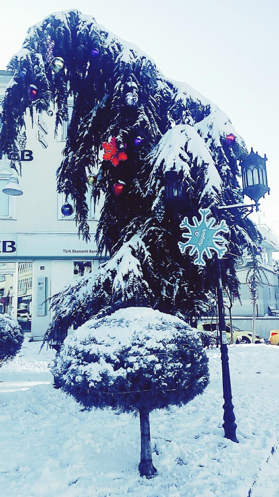 1.1.2017 Hi2017 Firstday Hellowinter Winterishere Winteriscoming Winterisalmostover Anewyear Noël Street Tree Agac Sokak Edirne YeniYıl Kış Ilkgun Withboyfriend White Beyaz