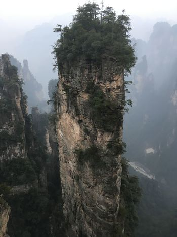 Beauty In Nature Cliff Day Fog Landscape Mountain Mountain Range Nature No People Outdoors Scenics Sky Tranquil Scene Tranquility Tree Zhangjiajie