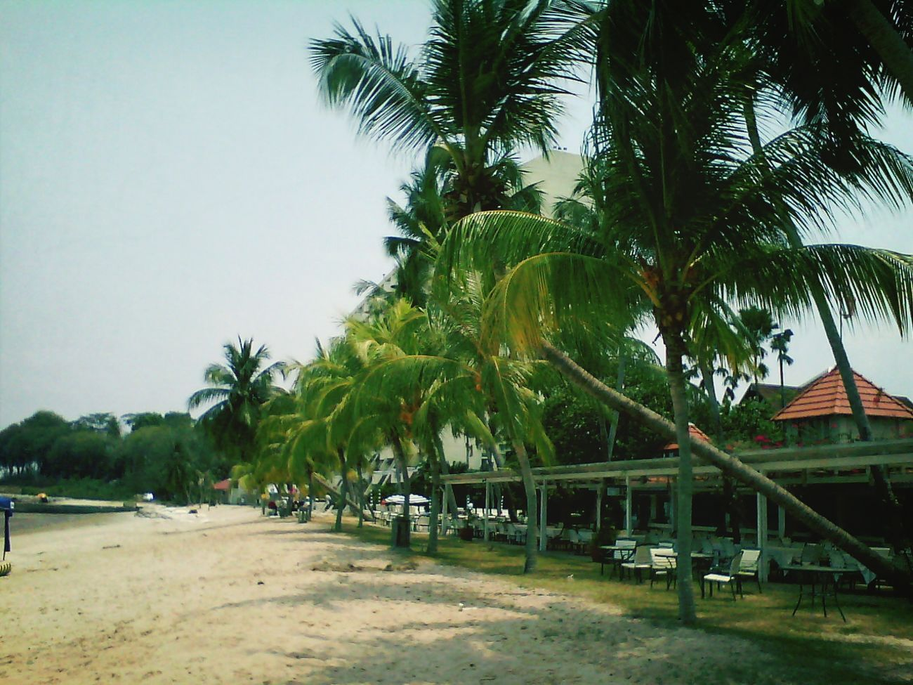 Beach Holiday EyeEm Malaysia Tropical